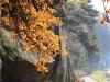 13-skamieniale-miasto-w-ciezkowicach-grunwald-fot-piotr-firlej-www-skamienialemiasto-pl_