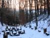 17-skamieniale-miasto-w-ciezkowicach-wawoz-harcerzy-fot-piotr-firlej-www-skamienialemiasto-pl_